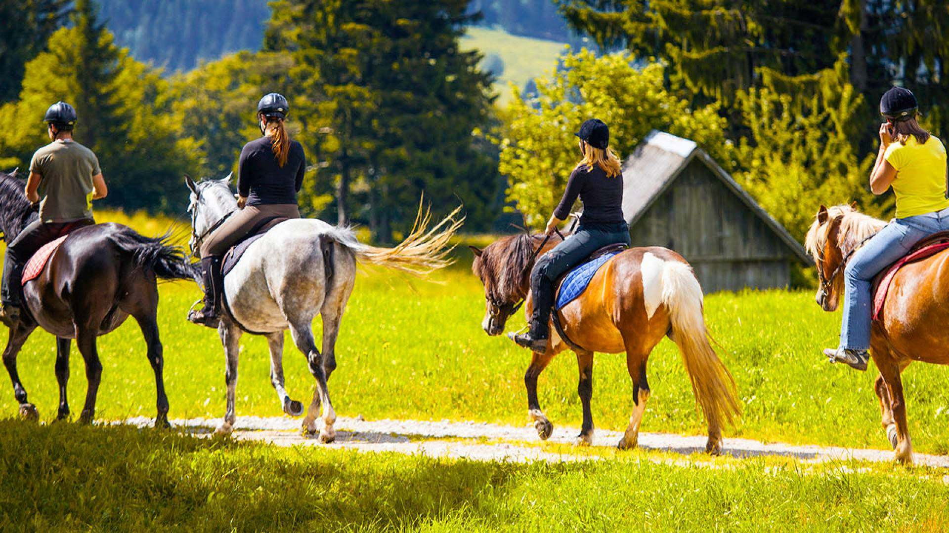 horse riding things to do le moulin hotel france